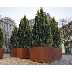 Bac à arbres Olbia carré en acier